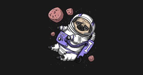 Astroanimales y sus hazañas